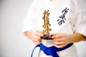 Сувенирная статуэтка киокушинкай