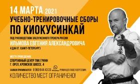 Учебно-тренировочные сборы по Киокусинкай под руководством Ильмова Е.А.